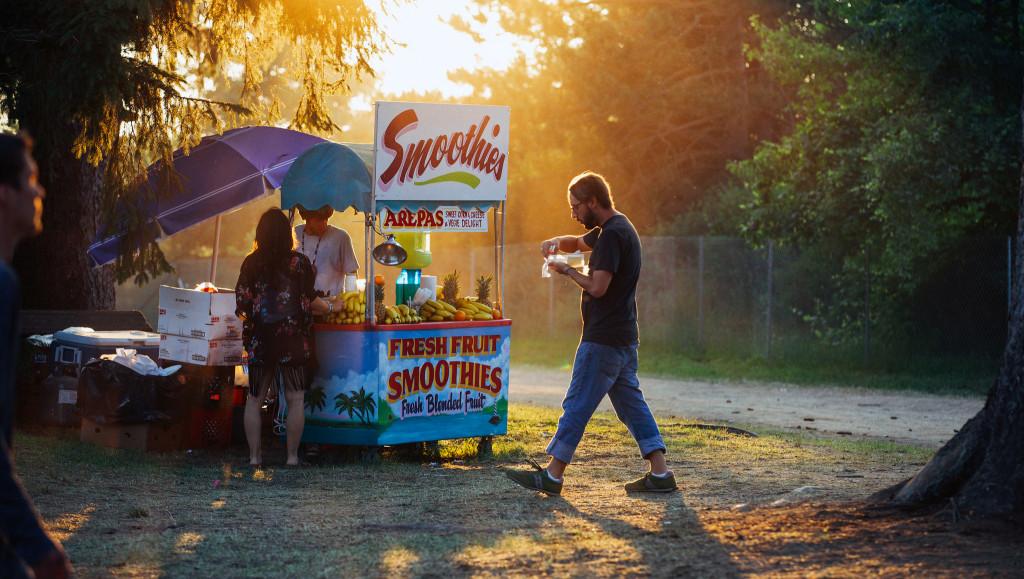 Electric Forest Music Festival 2014 (Nick Kassab | Detroit Music Magazine)